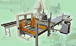 Robot palletizer 4 or 6 axis